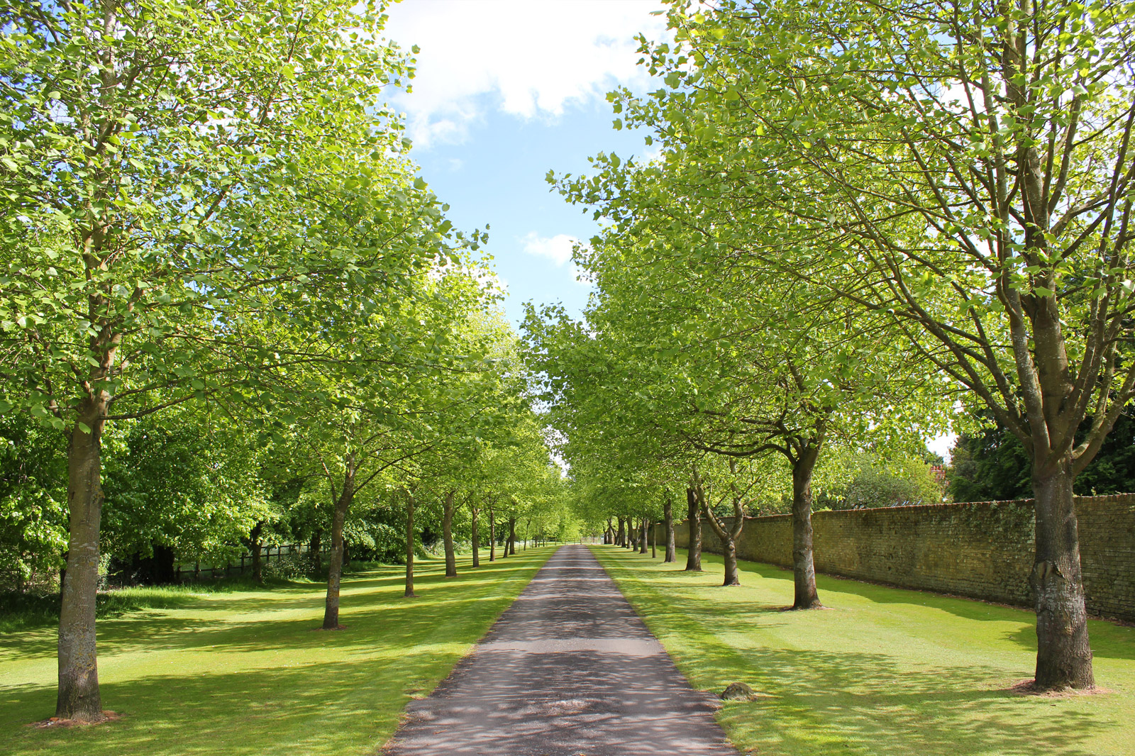 Chippenham Park